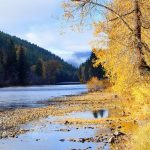 Kettle River - Midway BC