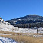Winter Field in Midway
